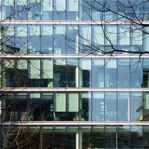 more-london-3-roller-blinds-02